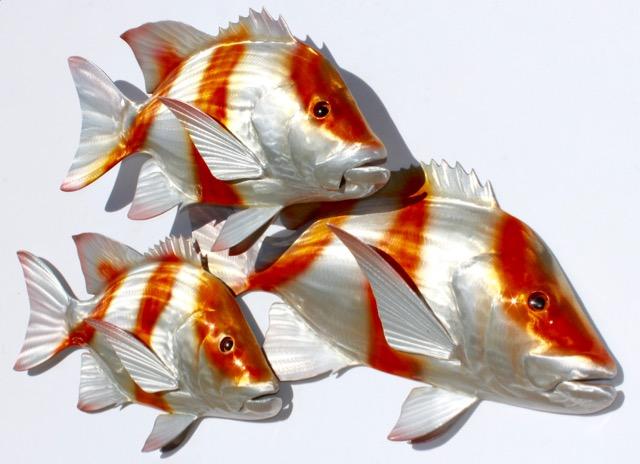 Red Emperor Shoal,  3 Fish
